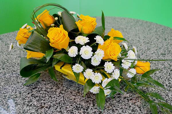 Розы белогорья белгород цены